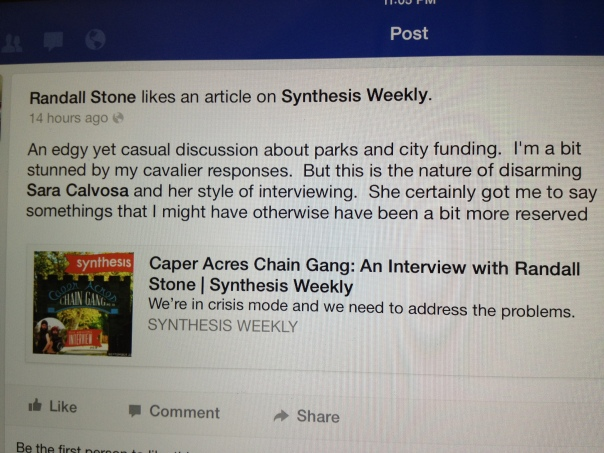 2013-09-23_STONE_FB_SYNTHESIS